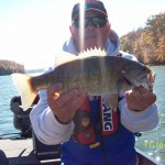 TIMS FORD LIVE BAIT 11-10-2014 005