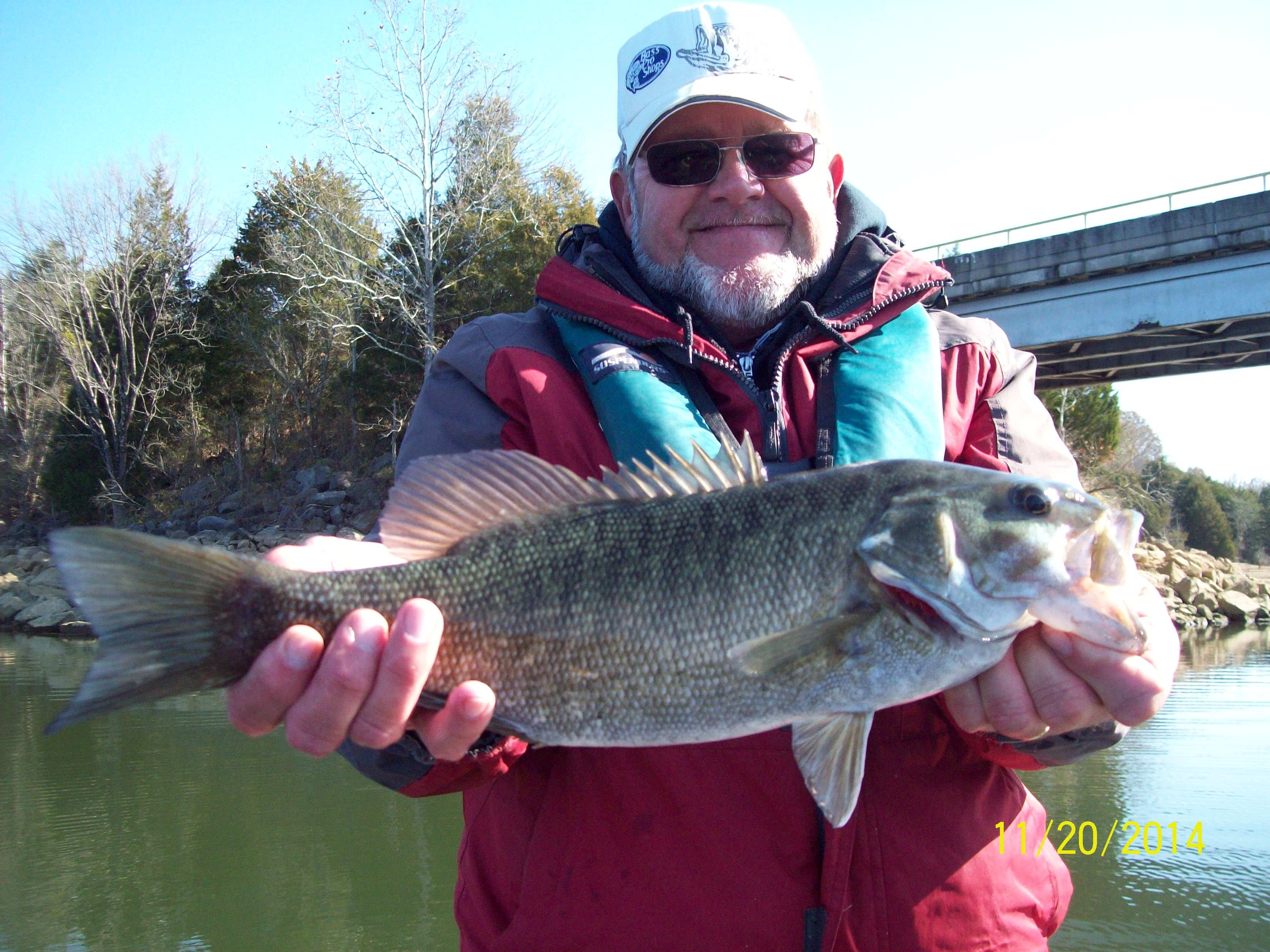 Tim s ford live bait 11 21 2014 tennessee bass guides for Bass fishing with live bait
