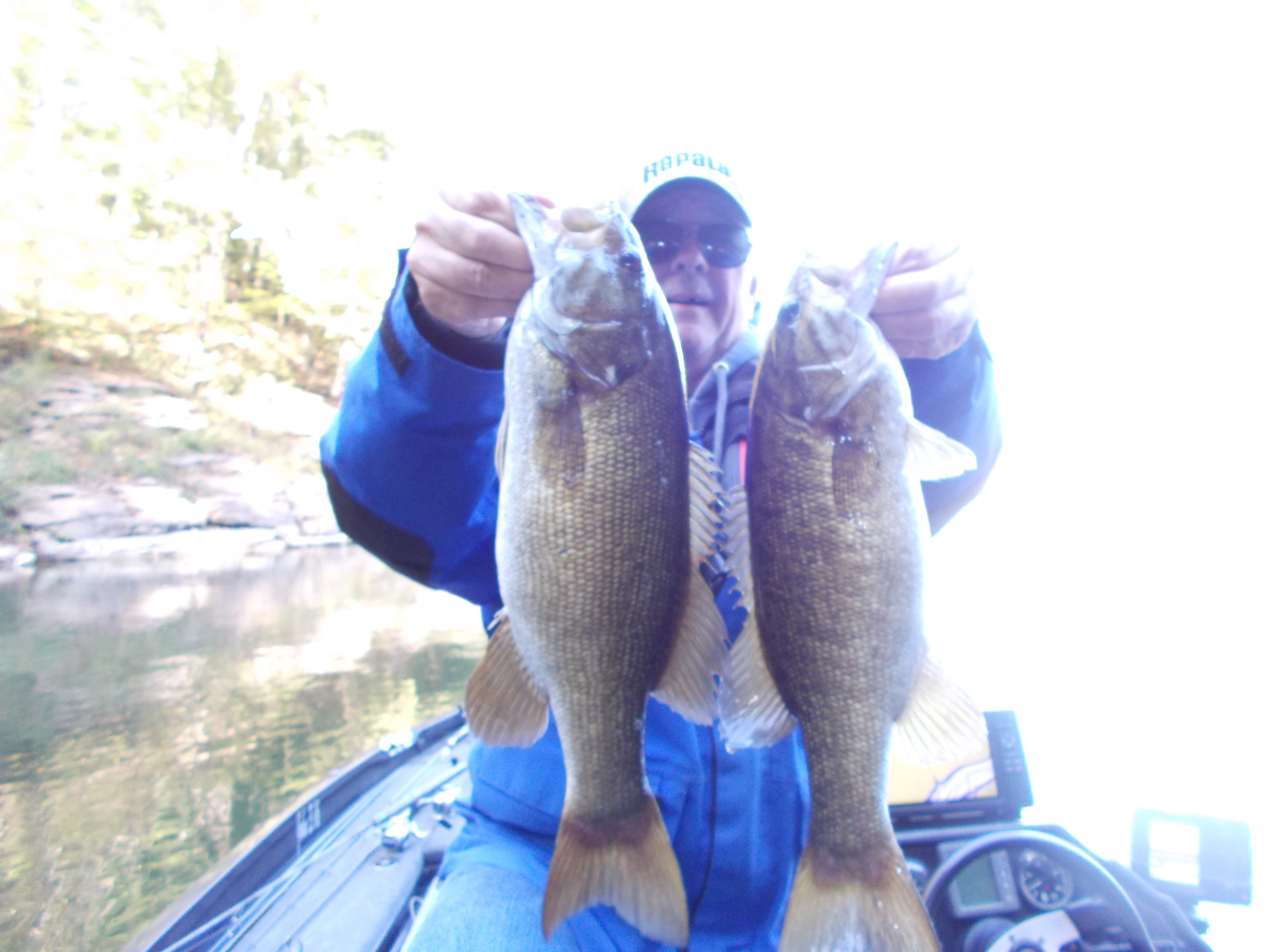Center hill smallmouth 10 20 2017 tennessee bass guides for Center hill lake fishing report