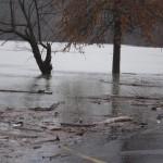 flood feb 2019 006
